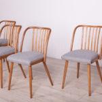 Komplet czterech krzeseł, proj. A. Suman, TON, Czechosłowacja, lata 60.