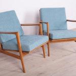 Para foteli 300-139, Swarzędzka Fabryka Mebli, Polska, lata 60.