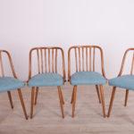 Komplet czterech krzeseł, proj. A. Suman, TON, Czechy, lata 60.